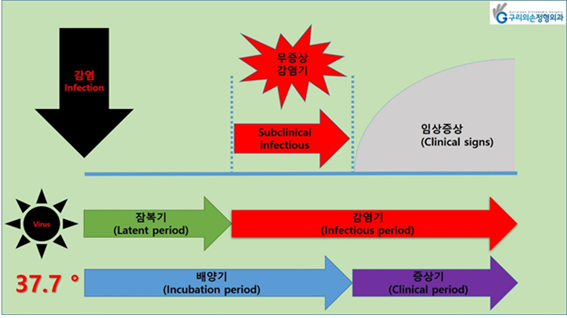 사진) 잠복기(latent period), 감염기(infectious period), 배양기(incubation period), 증상기(clinical period), 무증상감염기(subclinical infectious period)
